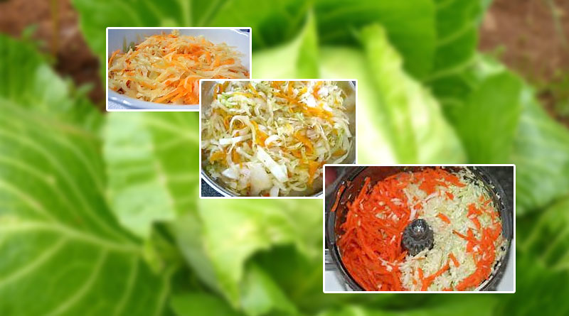 Bajan Steam Cabbage & Carrot