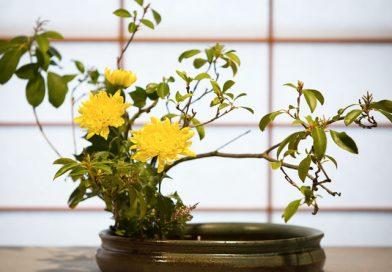 Ikebana: Floral Arrangement Reloaded