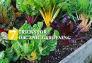 7 Tricks For Organic Gardening