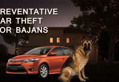 Preventative Car Theft For Bajans